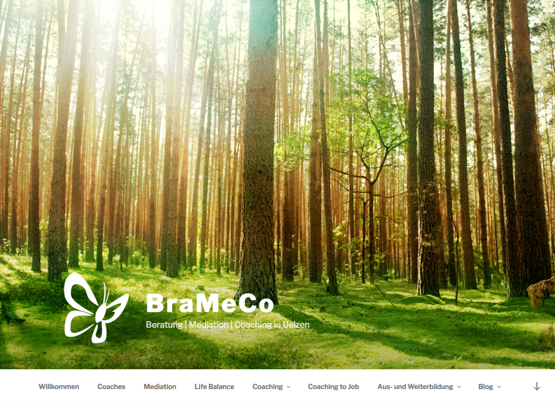BraMeCo Webseite